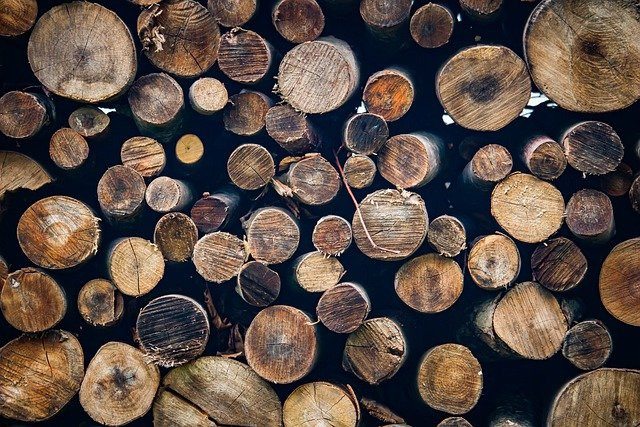 A wood-processing plant will be soon under construction in Wemotaci